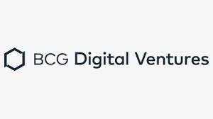 BCG dv logo